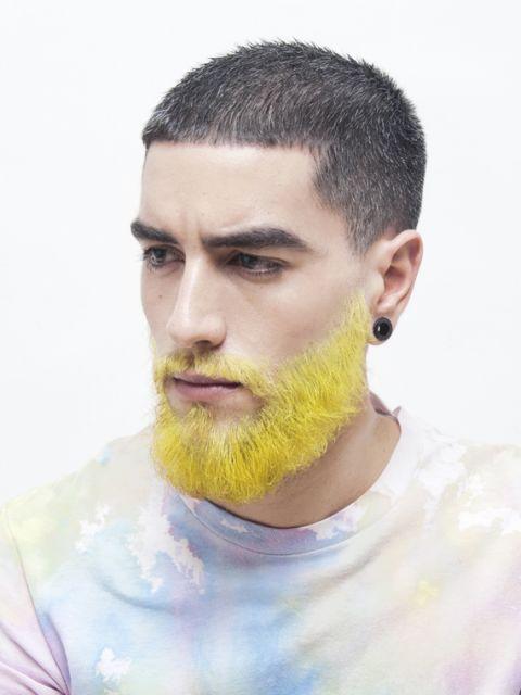 barba-amarela