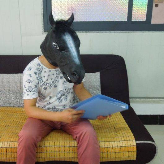 fantasia cavalo