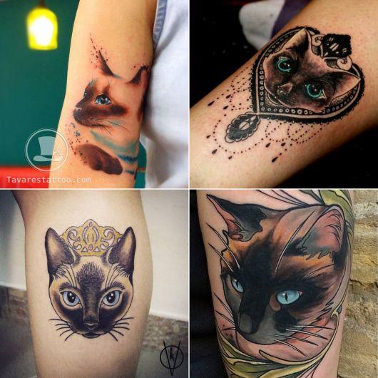 tatuagem de gato siamês