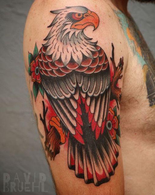 Tatuagem no ombro com o desenho colorido  de uma águia vista de costas olhando para o lado