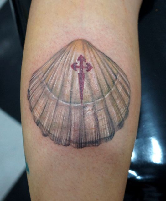 tatuagem de concha na batata da perna