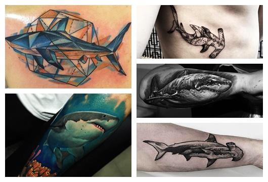 Montagem com cinco fotos diferentes de tatuagem de tubarão