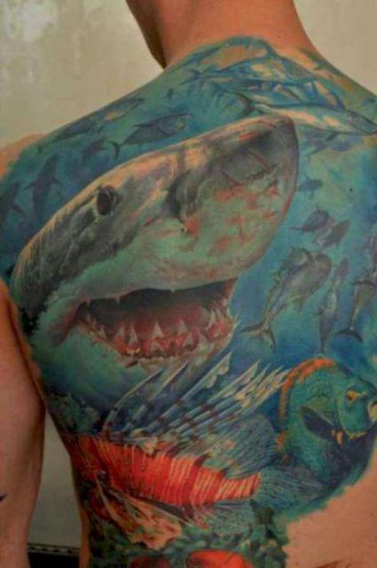 Tatuagem cobrindo as costas inteiras de um homem. Nela há um intimador tubarão branco com muitas cicatrizes enquanto nada pelo fundo do mar repleto de outros peixes.