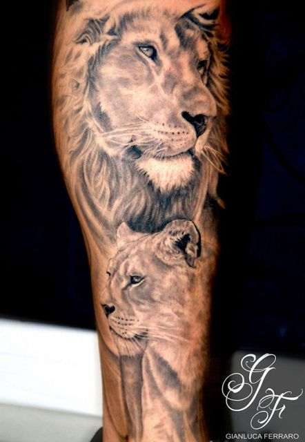 Leão e leoa juntos no braço