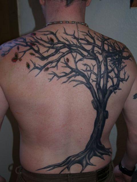Tatuagem nas costas masculina de árvore