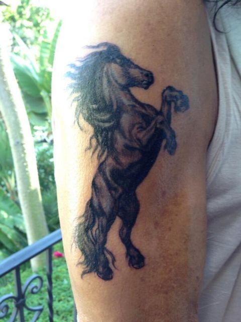 A pose do cavalo também faz toda a diferença