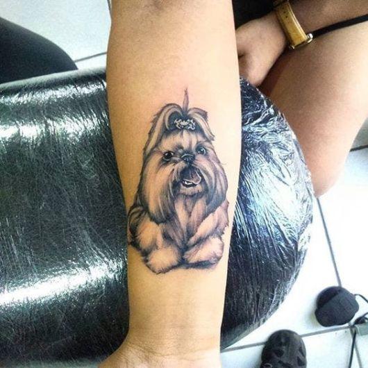 tatuagem Shih Tzu braço