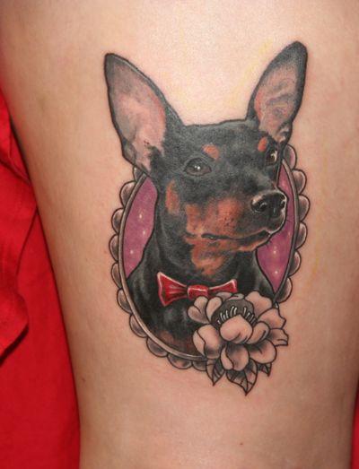 tatuagem colorida Pinscher