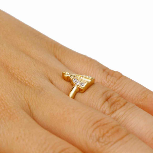 anel santa