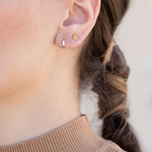 brincos orelha com 2 furos