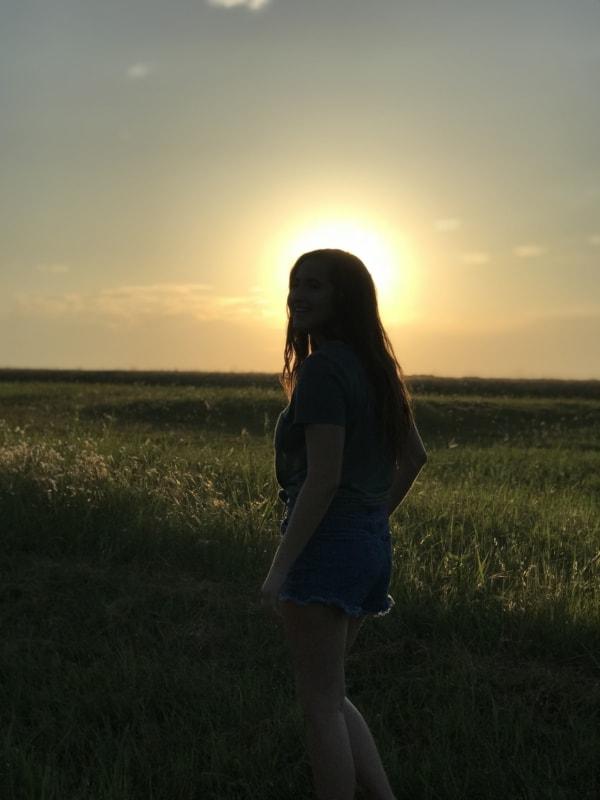 foto campo pôr do sol
