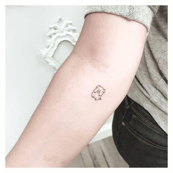 tatuagem de porquinho