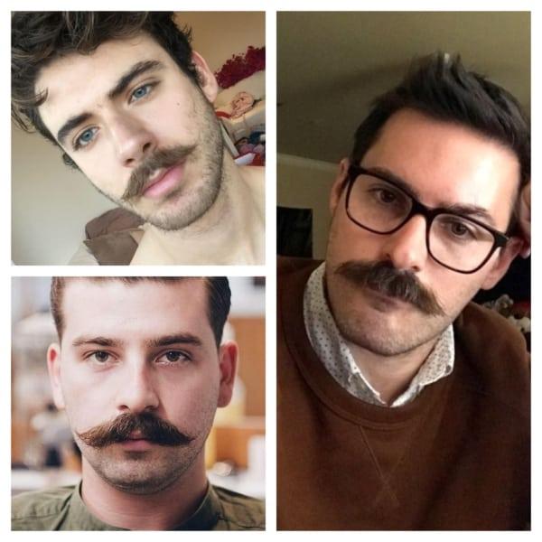 tipos de bigode