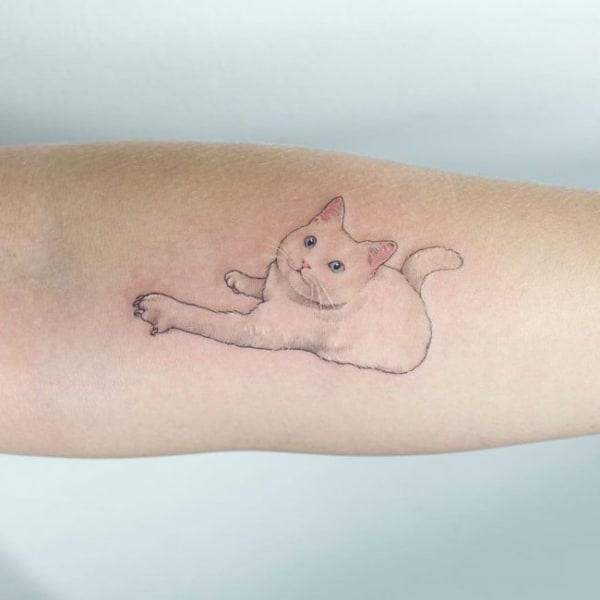tatuagem no bíceps feminina delicada de gato