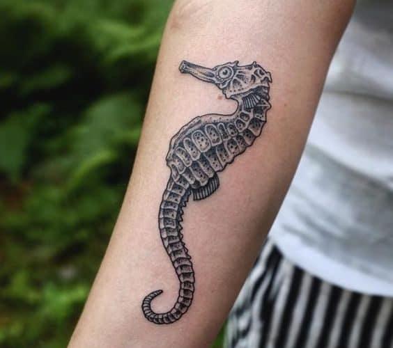 ideias de tatuagem cavalo marinho
