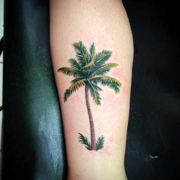 linda tatuagem de palmeira