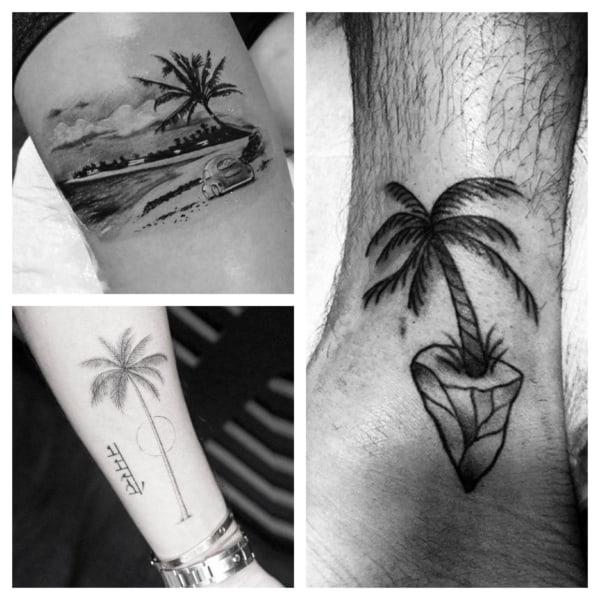 tatuagem de coqueiro sombreada 2