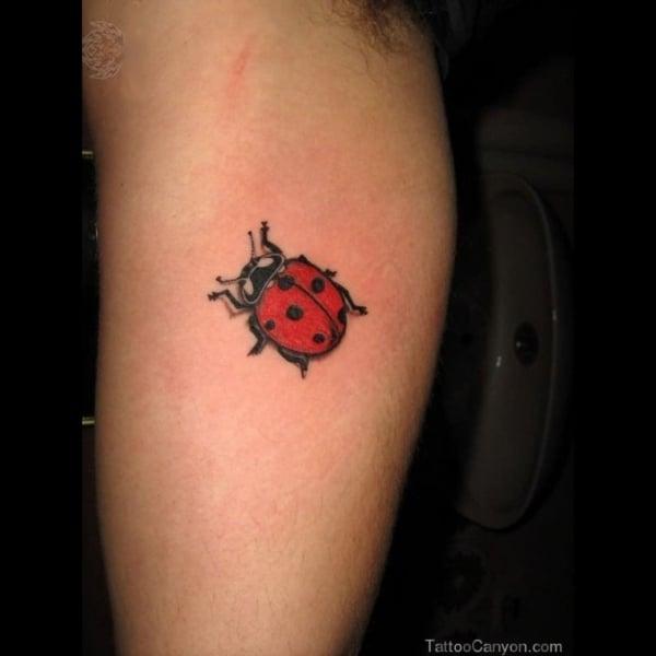 tatuagem de joaninha no braço masculina