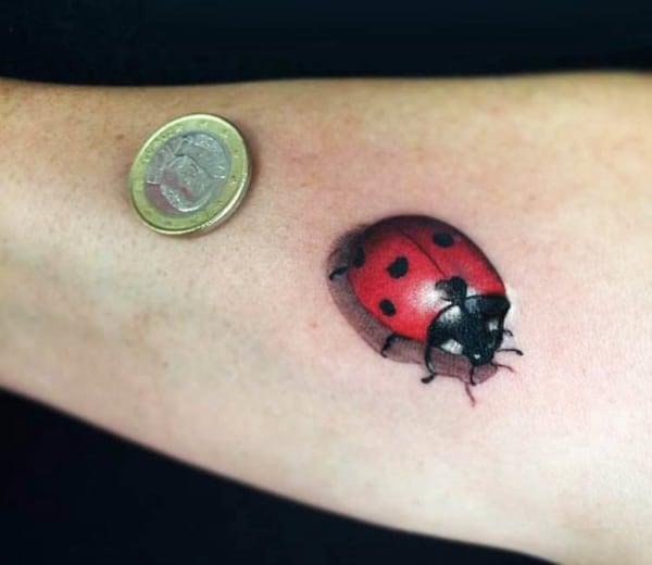 tatuagem de joaninha pequena no braço