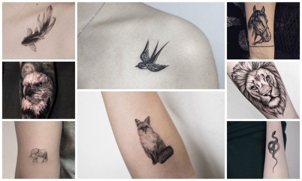 Tatuagem de Animais【2021】– 57 Ideias Geniais + Significados!